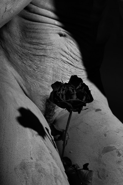 La rose noire II, photographie, Edith, Artcompulsion, Art contemporain