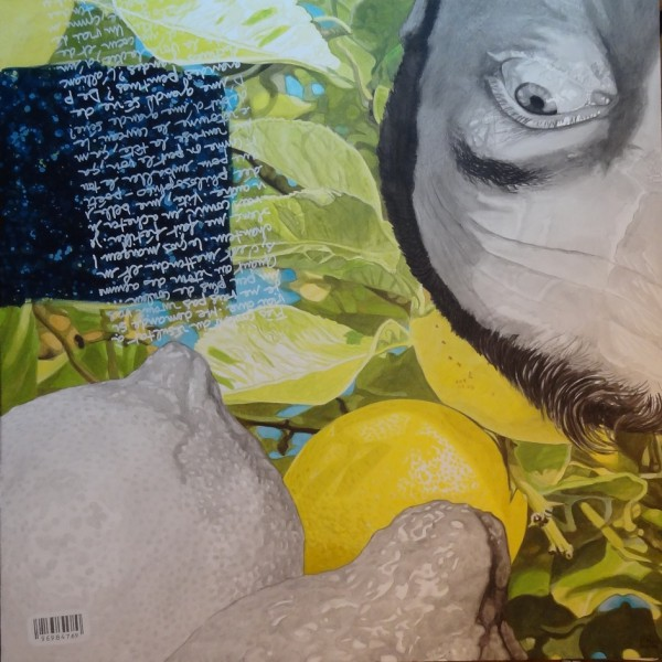 Les citrons, le retour 2, Acylic on canvas, Paul Rey, contemporary Art, Artcompulsion
