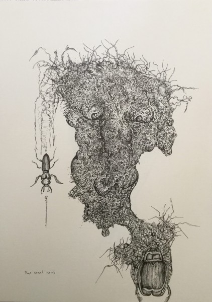 Le scarabée, drawing, rotring on paper, Frédéric babon, Outsider art